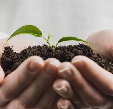 Protección Ambiental microlime